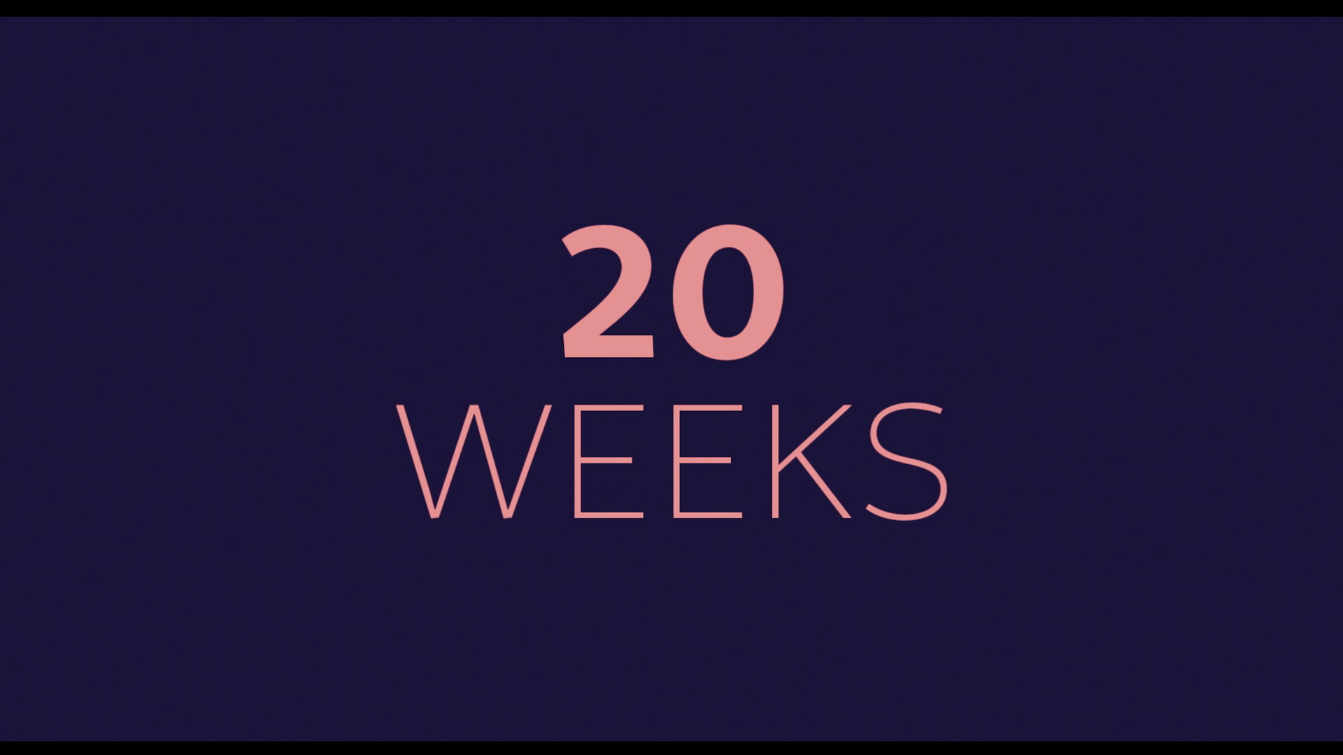 20 Weeks Trailer